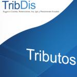 disoft servicios informáticos
